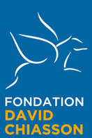 logo fondation david chiasson